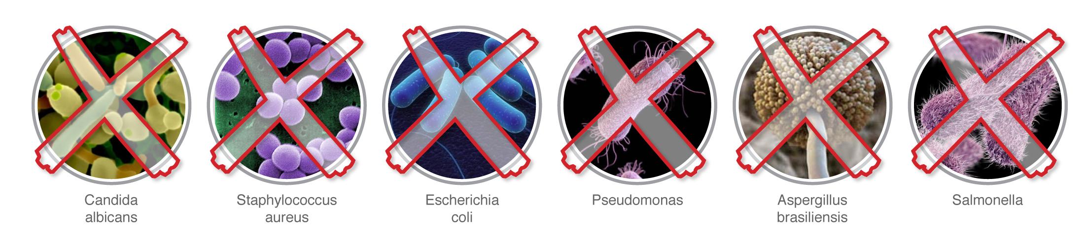 дезинфекция на бактрии и вируси ТАНГРА